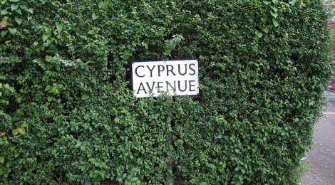 Cyprus Avenue, Belfast di Paul L Evans, su Flickr