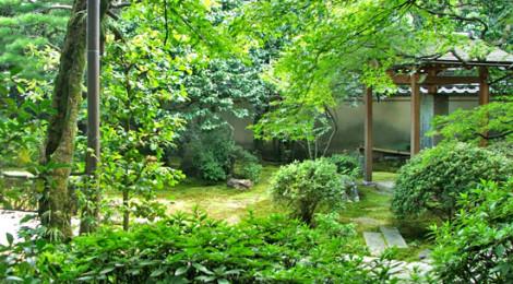 Daitokuji, Kyoto ©turismoletterario.com