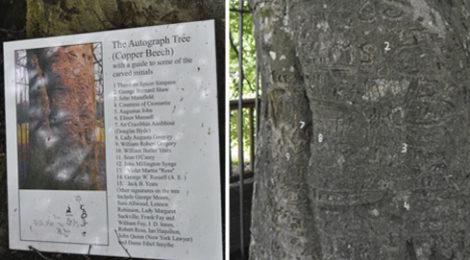 Autograph Tree @turismoletterario.com